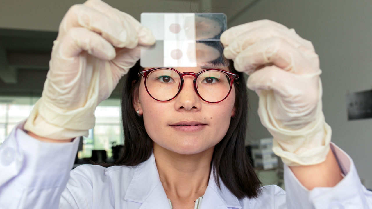 Trung Quốc đã loại trừ bệnh sốt rét